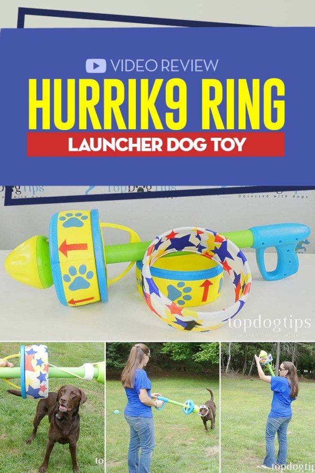 Review of HurriK9 Ring Launcher Dog Toy
