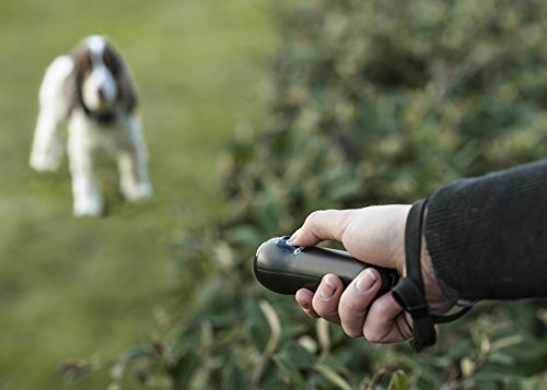 First Alert Handheld Bark Control Device