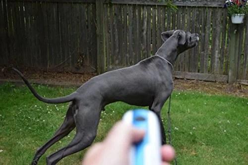 Doggie Don't Handheld Bark Control Device