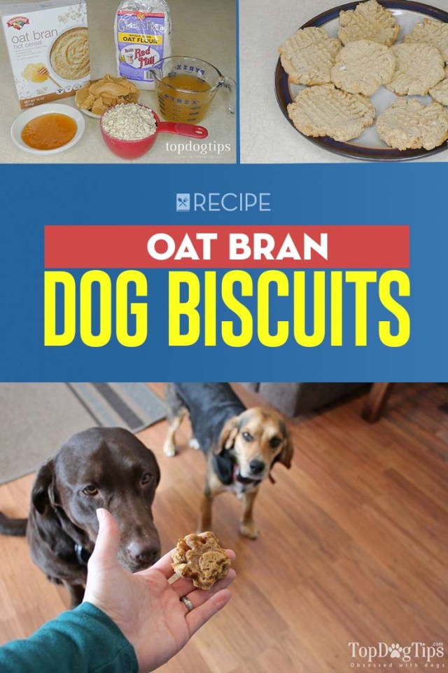 Recipe of Oat Bran Dog Biscuits