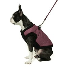 Dog Bomber Jacket Coat with Stretchable Chest by Gooby