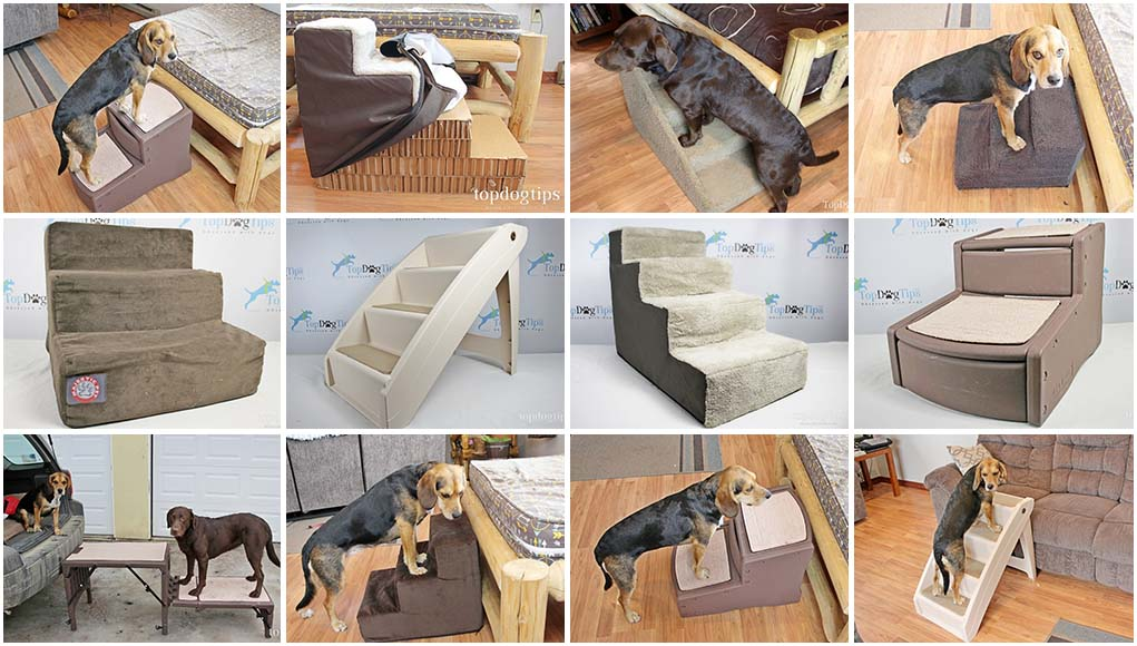 Best Dog Stairs for High Bed