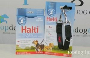 Halti No-Pull Harness and Lead