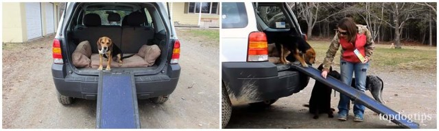 How to Help Your Dog Get Into a Car (Using a Ramp)
