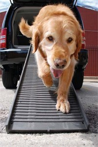 Size of the Car Ramp for Dogs