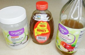 home remedies for dog allergies