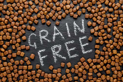 Ask a Veterinarian - Is Grain Free Food Bad for Dogs