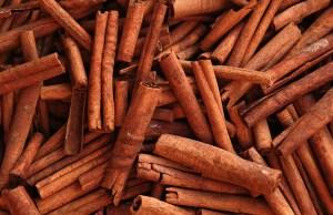 Cinnamon in Homemade Dog Food Recipes