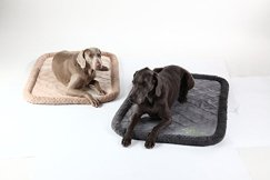 Bolstered Dog Bed with Chew Proof Technology