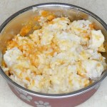 Chicken and Rice Dog Food for Upset Stomach