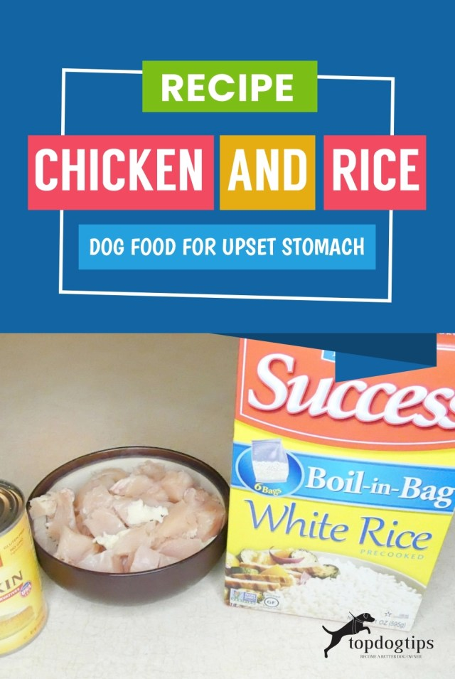 Recipe- Chicken and Rice Dog Food for Upset Stomach