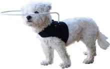 Walkin' Halo Blind Dog Harness