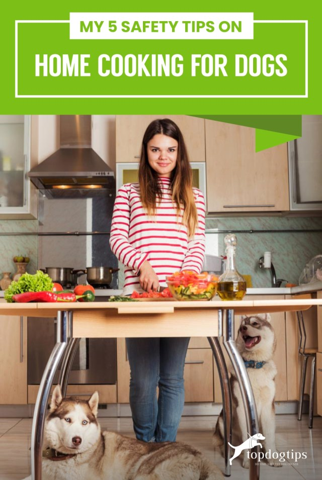 My 5 Safety Tips on Home Cooking for Dogs