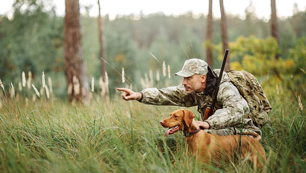 13 Best Hunting Dogs