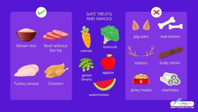 Homemade Dog Food for Renal Disease
