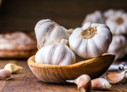herbal remedies for dogs garlic