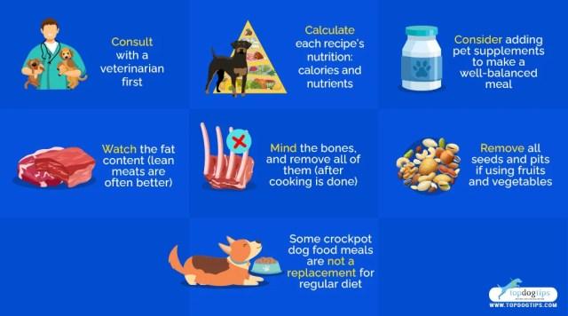 5 Homemade Crockpot Dog Food Recipes Vet Recommendations