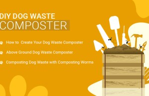 DIY Dog Waste Composter