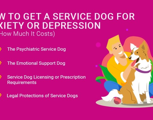 How to Get a Service Dog for Anxiety or Depression (And How Much It Costs)