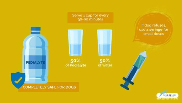 Make a Dog Drink
