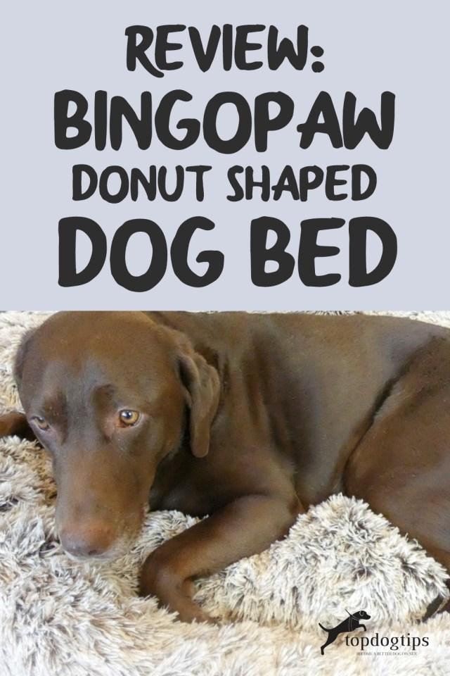 Review BingoPaw Donut-Shaped Dog Bed
