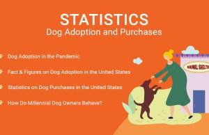 Statistics- Dog Adoption and Purchases