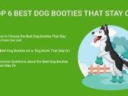 Dog Booties That Stay On