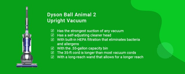 Dyson Ball Animal 2 Total Clean Upright Vacuum Cleaner, Blue best vacuums for dog hair