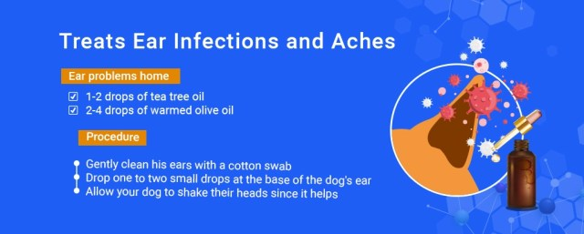 tea tree oil,infections and aches