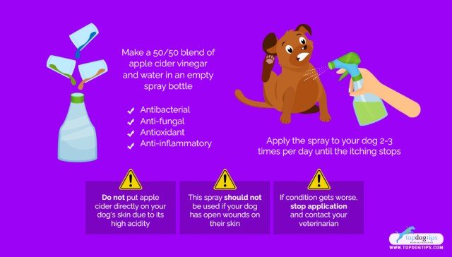 Homemade Dog Itch Spray