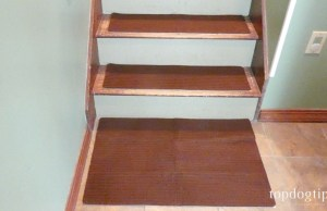 BarkinBuddy Stair Treads for Dogs