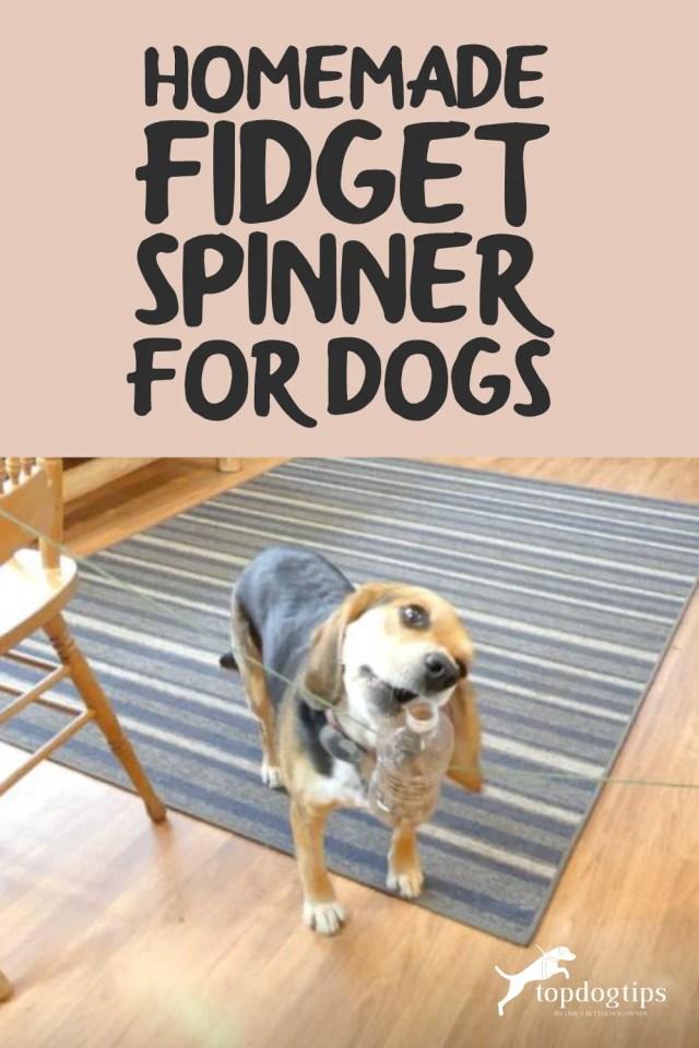 Homemade Fidget Spinner for Dogs