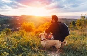 Dog-friendly Vacation Destinations