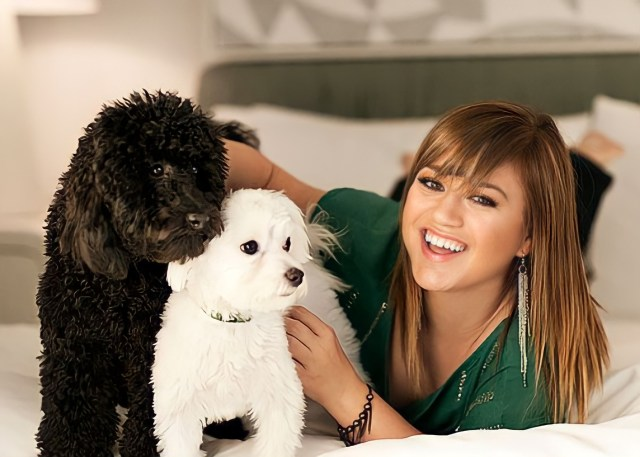 Kelly Clarkson and Her Rescue Dogs