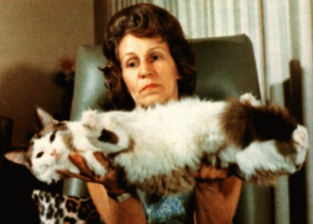 Ann Baker with Ragdoll: Ragdoll Cats' History