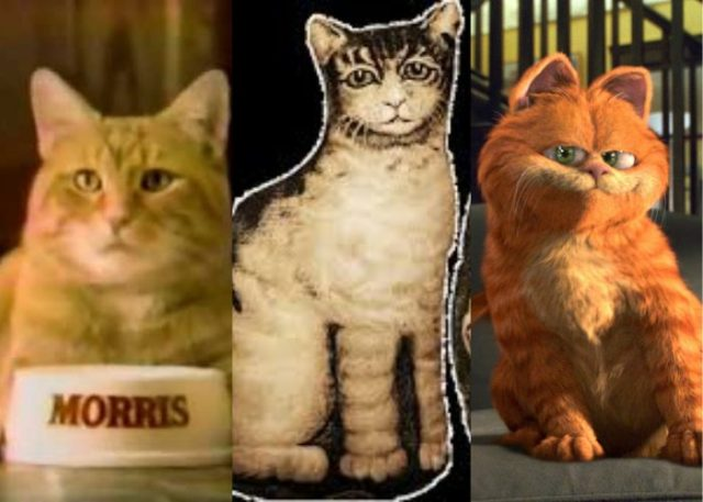 Morris the Cat, Ithaca Kitty, and Garfield