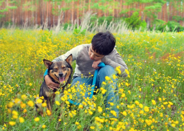 Health benefit of owning a dog for young teens