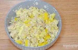 Veggie Omelet for Dogs