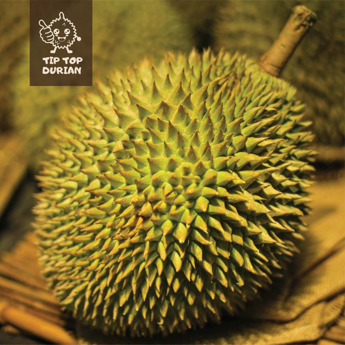 Super XO Premium (2) | Tip Top Durian Delivery | Malaysia Top Fresh Durian Online Delivery