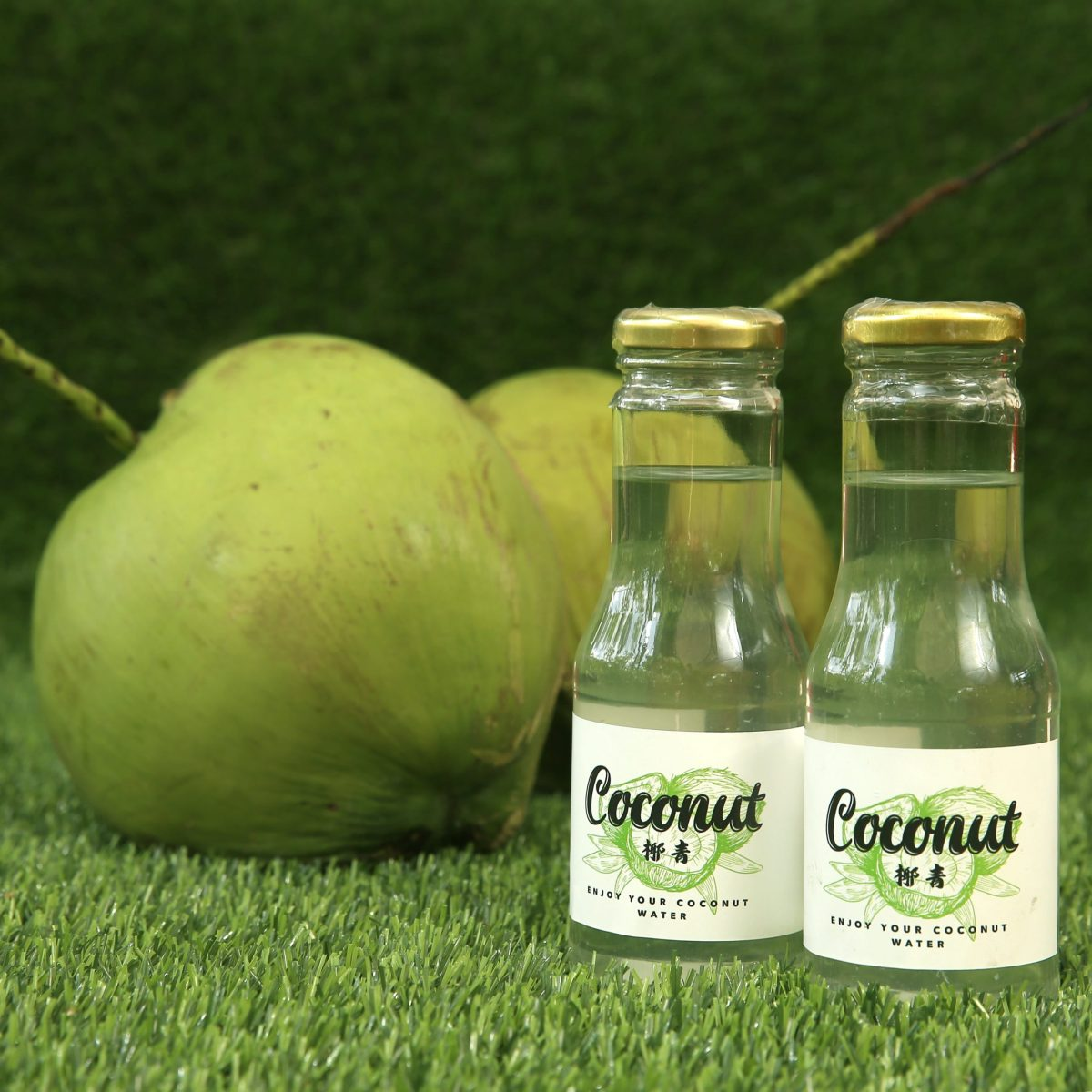 Coconut Water | Musang King | D24 | Fresh Durian | Durian Ice Cream | Durian Mochi | Durian Crepe Cake | Durian Cheesecake | Tip Top Durian Delivery | Malaysia Top Fresh Durian Online Delivery