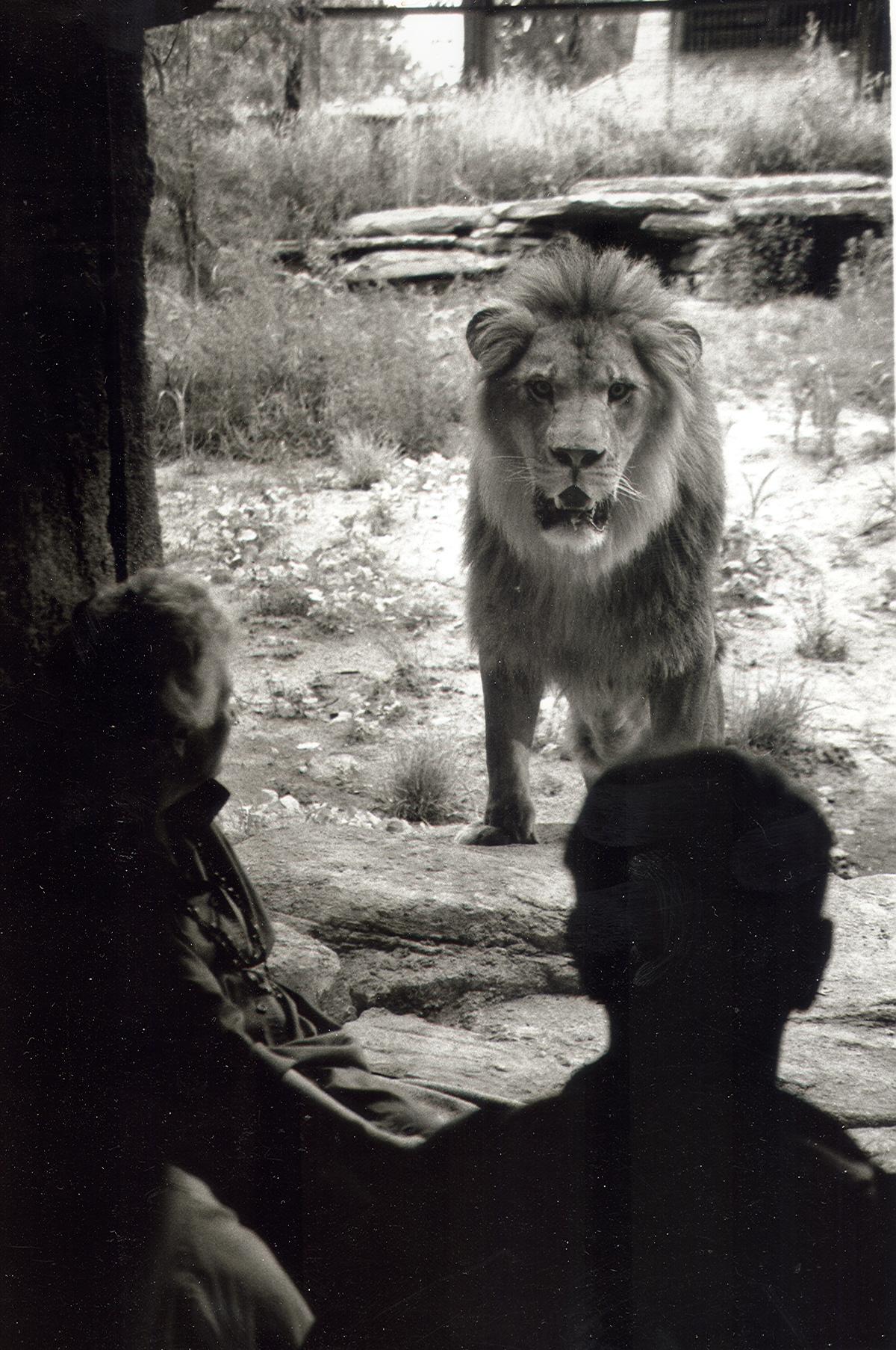 Grand Opening of Lions Pride: Samburu 1989