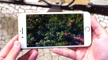 pantalla integrada en el iPhone 8 Plus