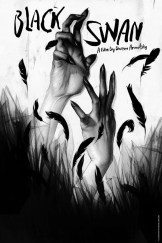 fondo de pantalla cisne negro