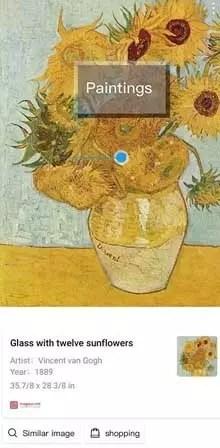 Pintura reconocida por HiVision de Huawei