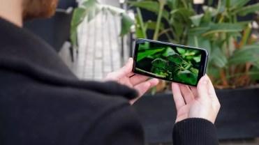 Calidad pantalla Nokia 7.1