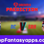 DC vs SRH Dream11 Team Prediction for Toadys IPL Match,100% Winning