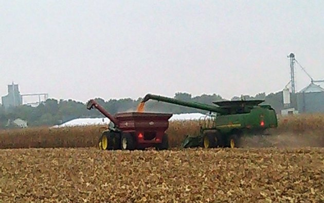 Combines in Maroa