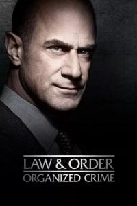 Lei e Ordem: Crime Organizado