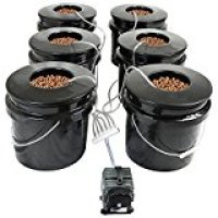 HTG Supply Bubble Brothers 6-Site DWC Hydroponic System