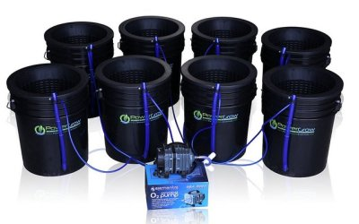 Deep Water Culture Hydroponic Bucket Kit – Best Hydroponic System